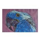 Thumb maleri parrot
